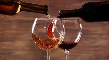 Weingut Wein guter Tropfen Rotwein Weisswein Geniessen Trinken Reise Weinreise