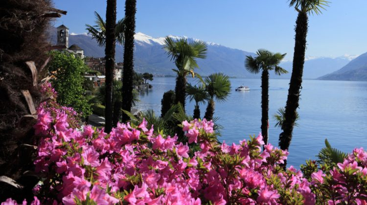 Tessin Ticino Frühling Reiseziele