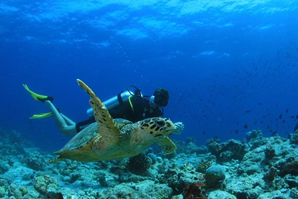Malediven Reisen Tipps