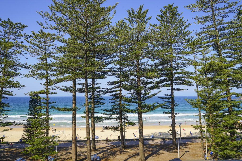Manly Beach Australien Sydney