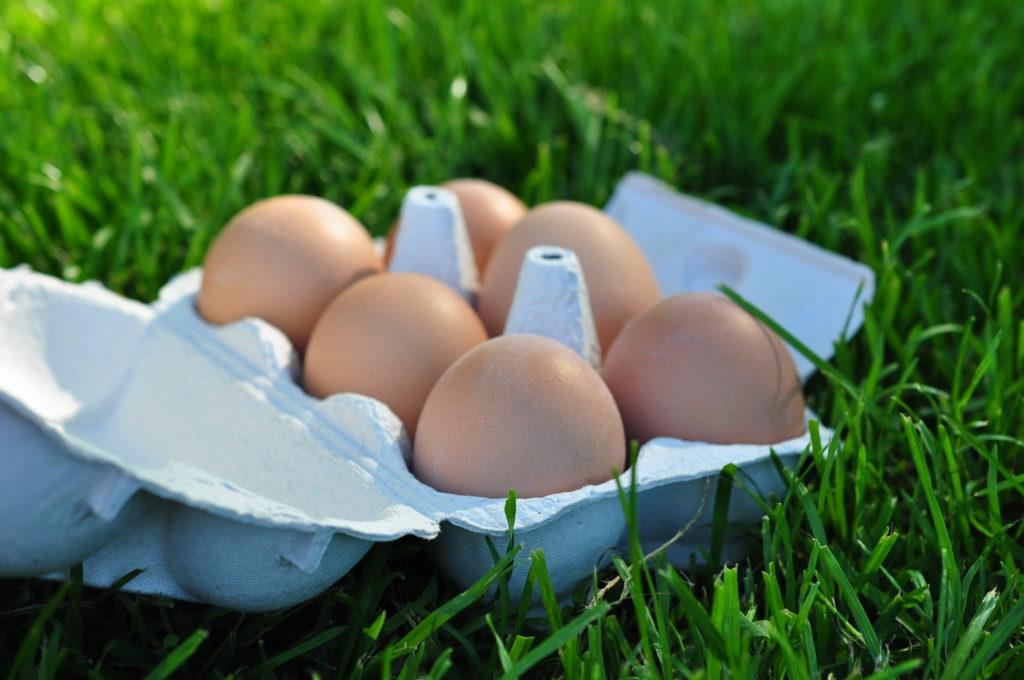 Eier Lebensmittel für gesunden Schlaf