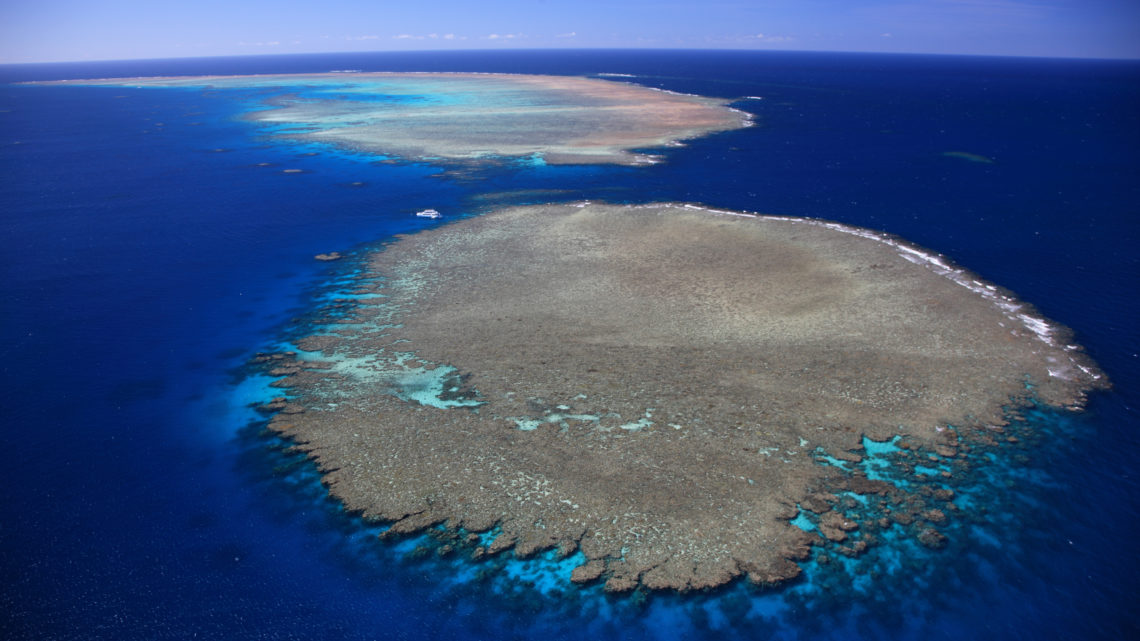Tourism and Events Queensland (TEG) Great Barrier Reef Australien Erholung Korallen Riffe Klimawandel