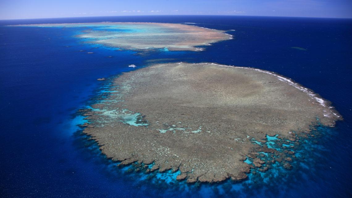 Tourism and Events Queensland (TEG) Great Barrier Reef Australien Erholung Korallen Riffe Klimawandel