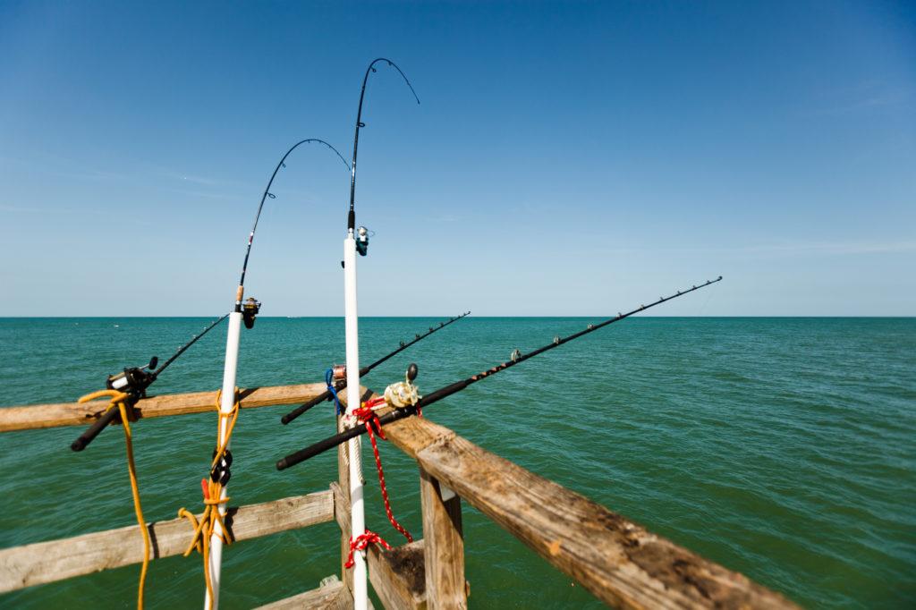 Angelausrüstung Fischen Visit St. Pete Clearwater worldofwellness